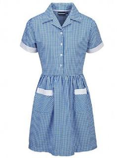 Blue Button Summer Dress