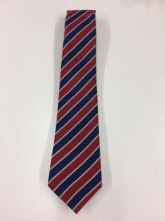 d'Auvergne Year 6 Tie