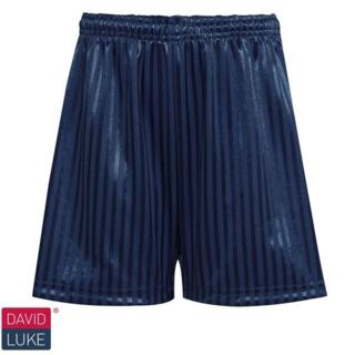 Navy Shadow Stripe Shorts