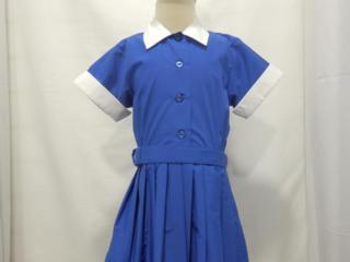 Helvetia Dress