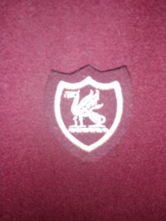 St George's Cloth Badge